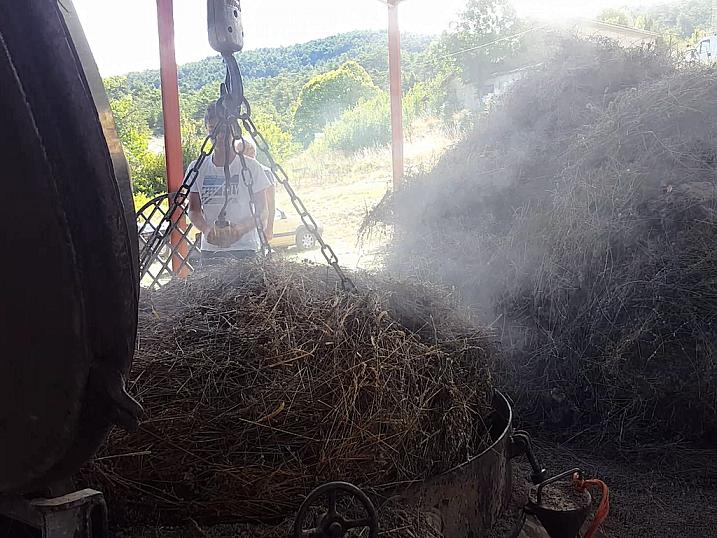 Distillation lavande Baronnies
